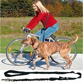 LAISSE VELO ET JOGGING au rayon Chiens, Education - Sports & Plein air